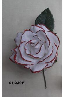 Rosa 01.230P