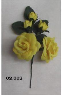 Rosa 02.002