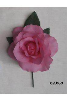 Rosa 02.003