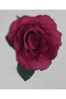 Rosa 02.009